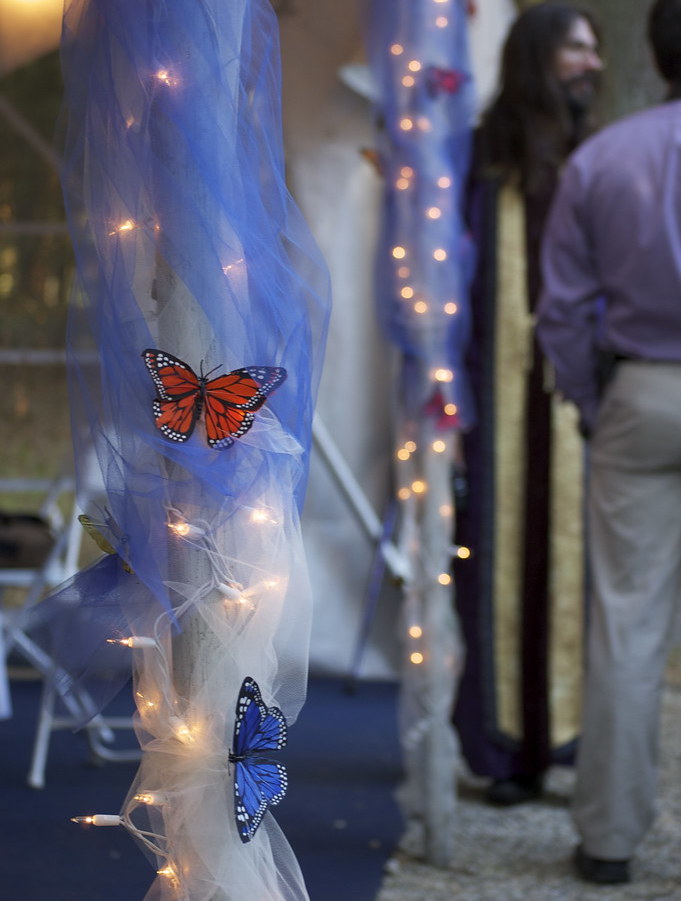 top 10 quinceanera themes butterfly garden